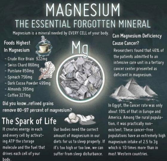 5 Ways Magnesium Heals Your Body & Mind-Buddhism