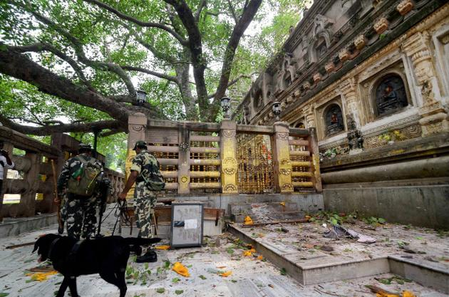 Security personnel use a sniffer dog to near the Bodhi tree, in Bodh Gaya. The Mahabodhi Temple and the Bodhi tree did not suffer any damage. Photo: PTI