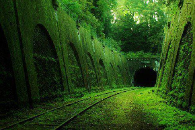 Charming Abandoned Railway France